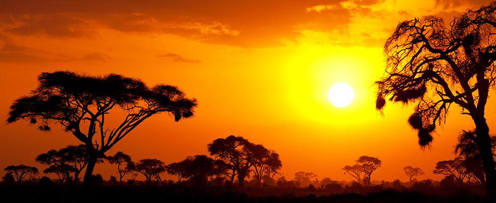 Най-продаваната снимка от Кения