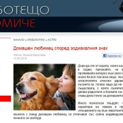 woman-and-dog-01